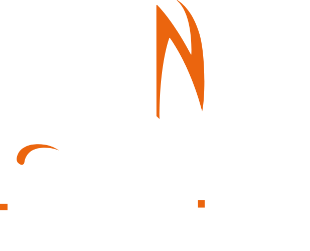 Team Noah